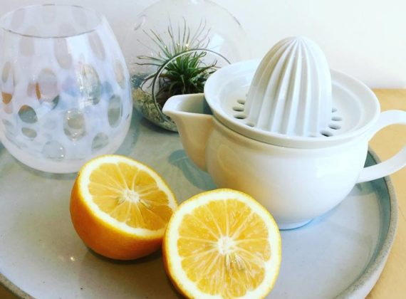 Porcelain citrus juicer